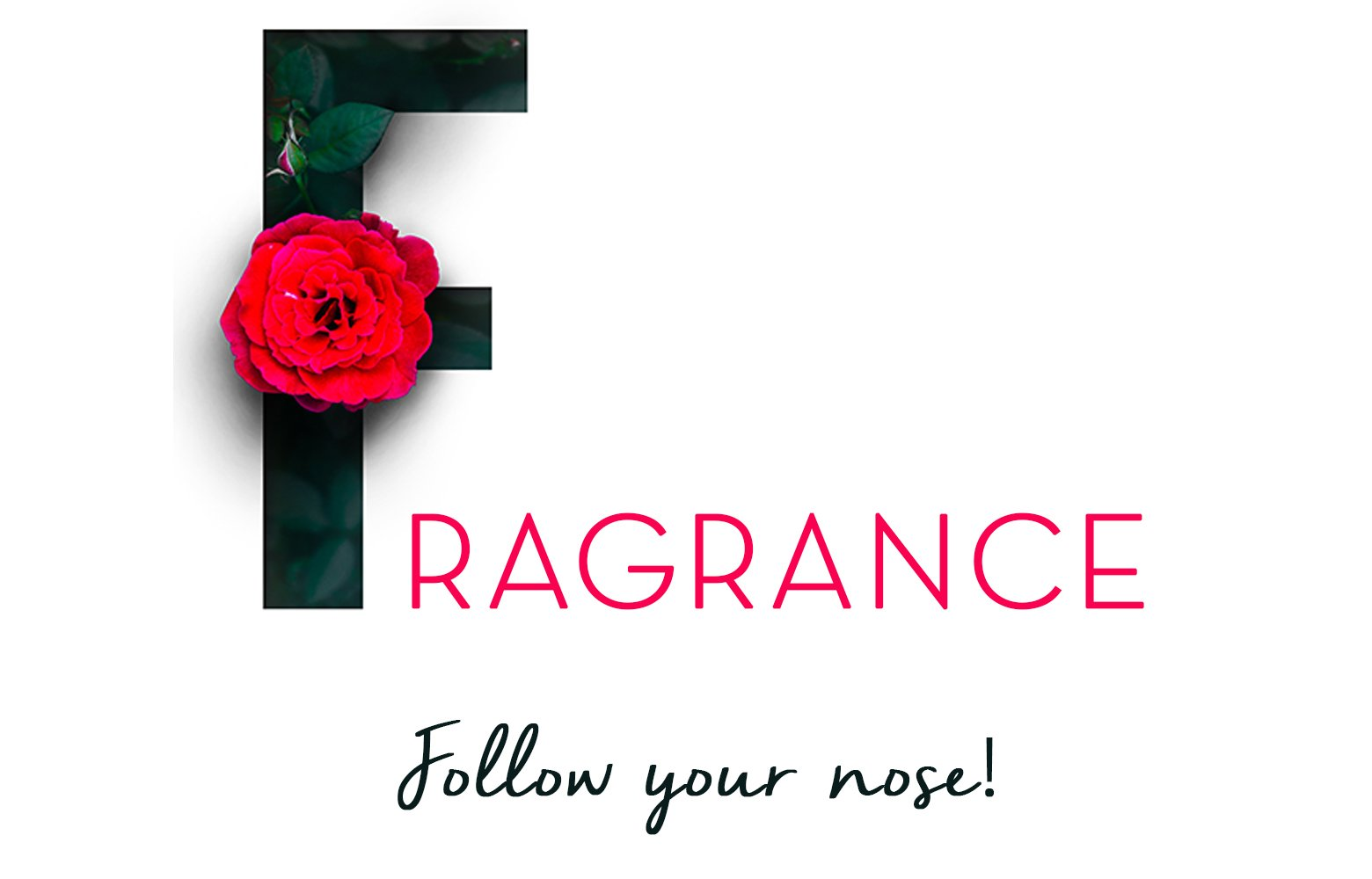 fragrance follow your nose