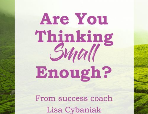 Are You Thinking SMALL Enough?